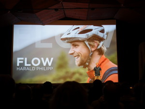 Harald Philipp - Flow