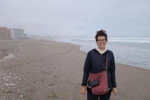 Am Strand von La Serena, 2014